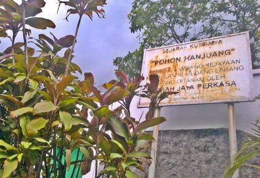 Situs Pohon Hanjuang Kutamaya