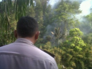 Kebakaran lahan perhutani di Ciseda.